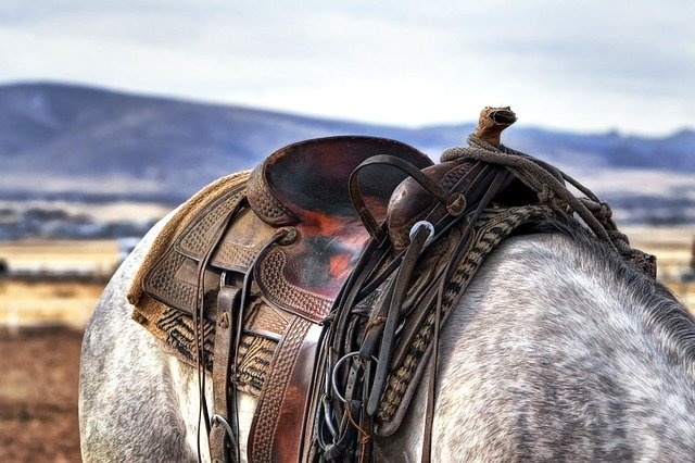 westernové sedlo