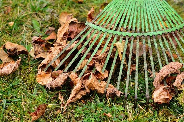 úklid spadaného listí